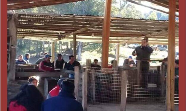 Remate de Cerdos y Aves en la Pedrera.