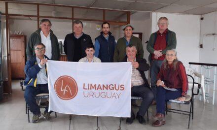 Criadores de Limangus en busca del P.I.