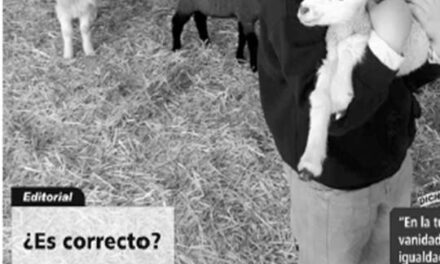 El Palenque Rural, Editorial : ¿Es Correcto?.