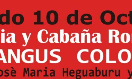 Cabaña Romanza – 100% DE COLOCACIÓN.