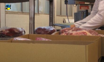Exportaciones de Carne cayeron 19%.