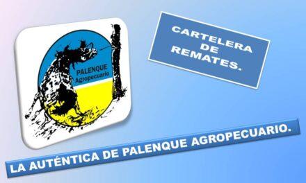 Remates diciembre – Cartelera de Palenque