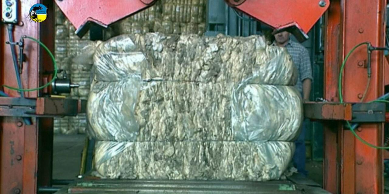 Mercado australiano de lanas Retrocedió