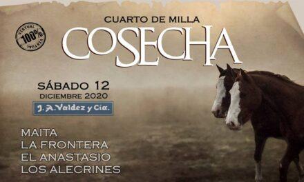 Remate Cosecha 2020 Virtual y Exitosa!!!