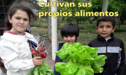 Véalo y Léalo El Palenque Rural, no se lo pierda