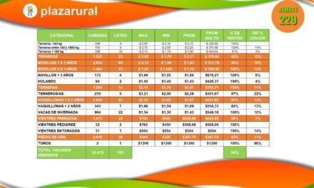 Plaza Rural 19.419 vacunos, colocación 94%