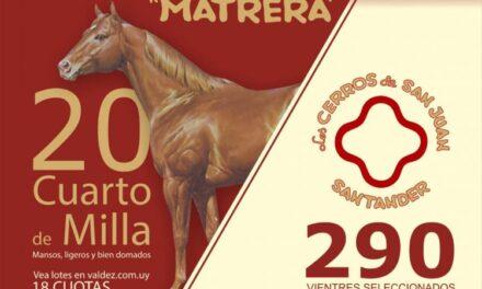 Remate Matrera y Estancia Santander 2021