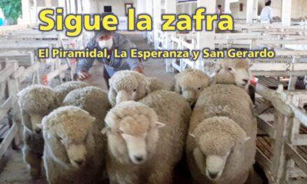 El Palenque Rural véalo y no se distraiga!!!