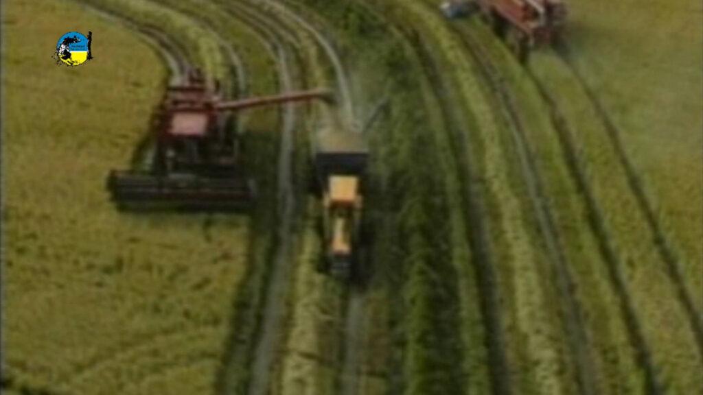 imagen de maquinas cosechando arroz