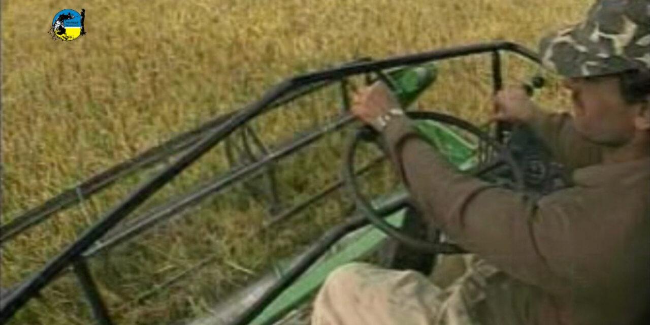 DIEA: resultados Agrícola Invierno 2021