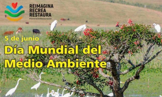 Palenque Rural: Día Mundial del Medio Ambiente