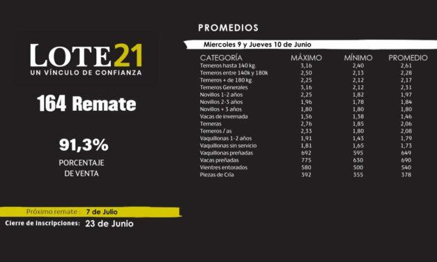 Lote 21 colocó el 91.3% de la oferta