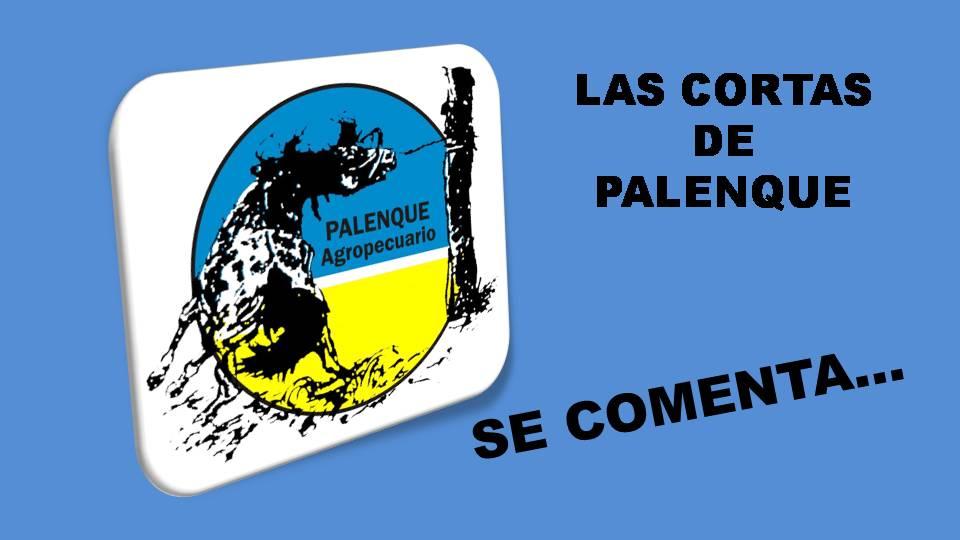 Palenque: Se comenta…