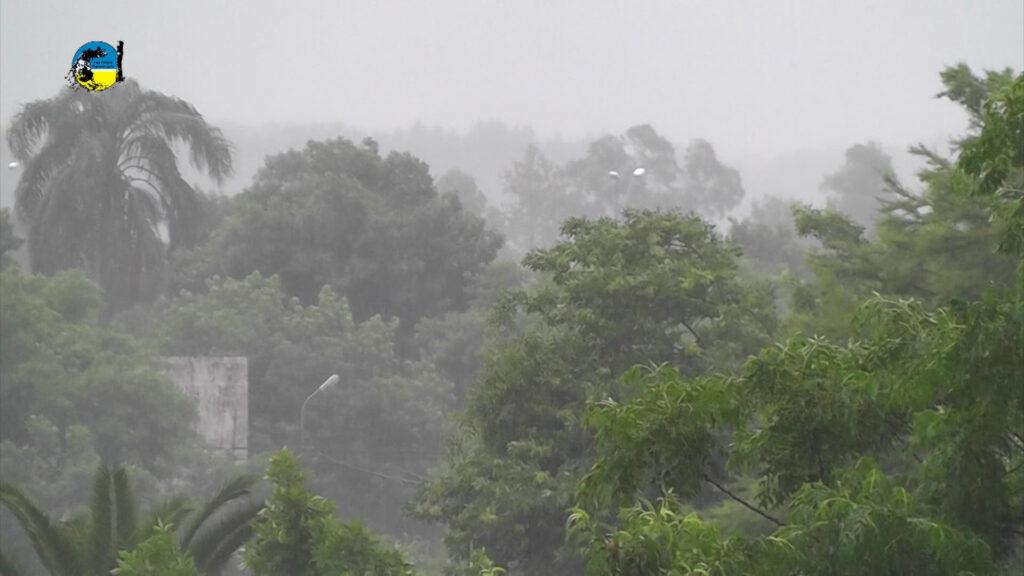 imagen de lluvia con árboles de fondo precipitaciones en tacuarembó y uruguay