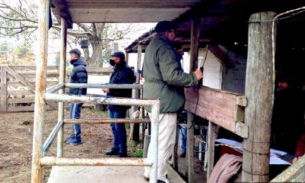Batoví: Ventas totales en el frío de la tarde