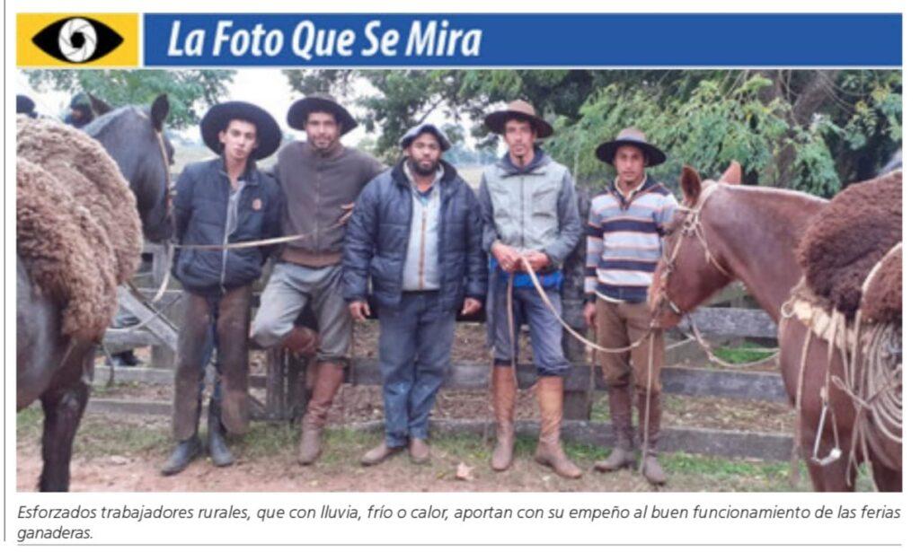 IMAGEN DE TRABAJADORES EN FERIA GANADERA