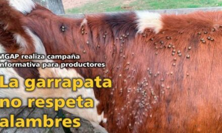 Palenque Rural: La Garrapata